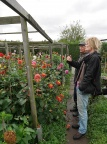 Brian Carter talks Dahlias with Island Monkey