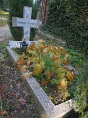 Edimental grave -- Edimental grave