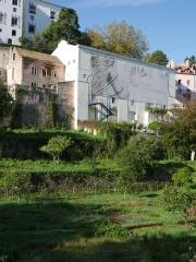 Sintra gardens -- Sintra gardens