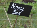 The NOMA bed