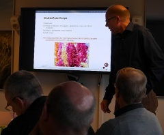 Gluten free crops -- Presentation from the Technical University on gluen free crops