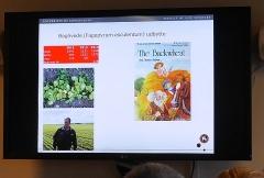 Gluten free crops -- Gluten free crops: buckwheat