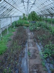NOMA greenhouse bed -- NOMA greenhouse bed