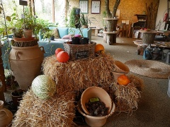 Naturplanteskolen's shop is an organic place  -- Naturplanteskolen's shop is an organic place