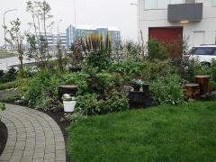Edimental garden -- Edimental garden
