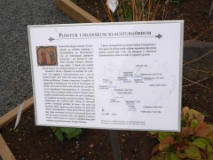 Monastery gardens in Iceland  -- Monastery gardens in Iceland: In another part of the garden, plants that there is good reason to believe were grown in monasteries at a much later date are shown. Per Arvid Åasen in Norway has published papers on this with an Icelandic author Steinunn Kristjánsdóttir.