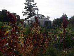 The kinship garden greenhouse -- The kinship garden greenhouse