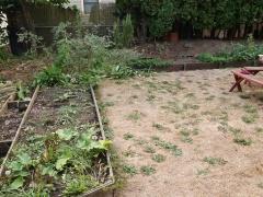 John Kallas' edible garden -- John Kallas' edible garden