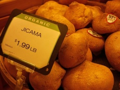 Jicama at New Seasons Market  -- Jicama at New Seasons Market in Portland