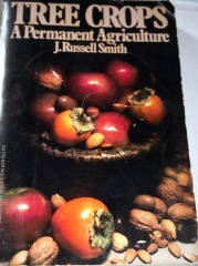 Tree Crops -- We met Donald Balser's wife Jane who has sadly died since my visit and she showed me this wonderful classic book Tree Crops by J. Russell Smith. David Holmgren explains the significance of this book to permaculture in this interview:  https://www.youtube.com/watch?v=Y7gOr7AzUUU