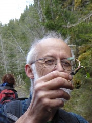 Berit8 / demonstrating alpine bistort / harerug tubers -- Demonstrating alpine bistort / harerug tubers