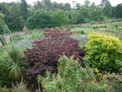 Walled garden view -- Walled garden view
