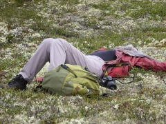 A Dane with altitude sickness?  -- A Dane with altitude sickness? ;)