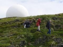 Kåre, Aiah and Søren descending from the giant puffball? -- Kåre, Aiah and Søren descending from the giant puffball?